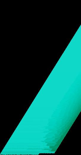 franja verde2